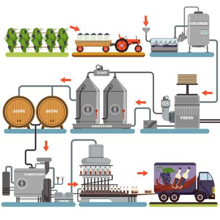 Ilustración de Wine production process, production beverage from grape flat vector Illustrations isolated on a white background - Imagen libre de derechos