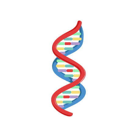 Ilustración de Spiral DNA. Genetic material. Micro and molecular biology. Colorful science icon in flat style. Vector illustration isolated on white background. Design element for logo, infographic, poster, brochure - Imagen libre de derechos