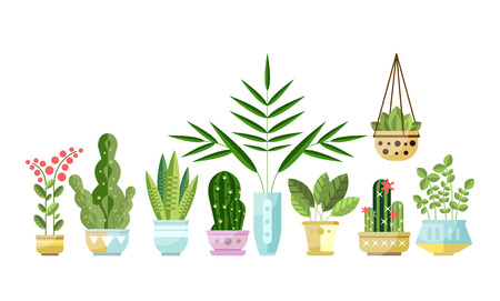Illustration for Set of flat style colorful houseplants in pots standing in line. Home decorative, exotic, deciduous green and blooming plants. Vector collection of indoor flowers, design elements isolated on white. - Royalty Free Image