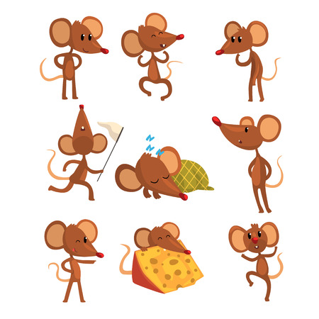 Ilustración de Set of cartoon mouse character in different actions. Sleeping, running with sweep-net, eating cheese, winking eye, jumping. Little brown rodent in flat style. Vector illustration isolated on white. - Imagen libre de derechos
