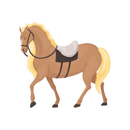 Illustration pour Thoroughbred horse, equestrian professional sport vector Illustration - image libre de droit