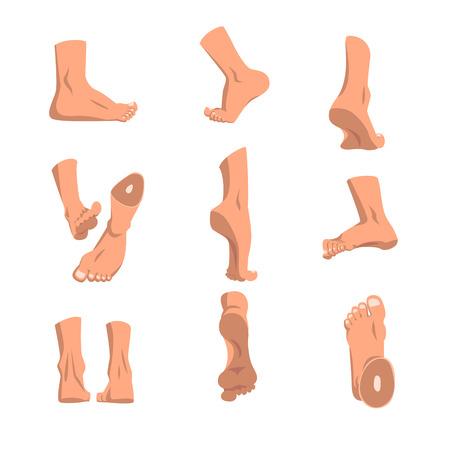 Ilustración de Human foot in various positions set, different views of male feet vector Illustrations on a white background - Imagen libre de derechos