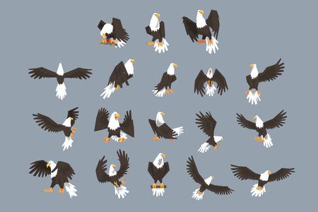Ilustración de The image consists of nine pictures of bald eagle flying, spreading its wings, sitting on a branch. The set has a grey background. - Imagen libre de derechos