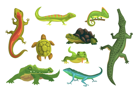 Illustration pour Reptiles and amphibians set of vector Illustrations isolated on a white background - image libre de droit