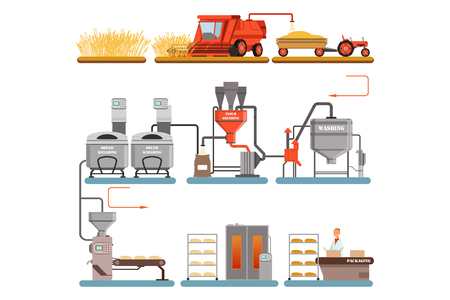 Ilustración de Bread production process stages from wheat harvest to freshly baked bread vector Illustrations isolated on a white background - Imagen libre de derechos
