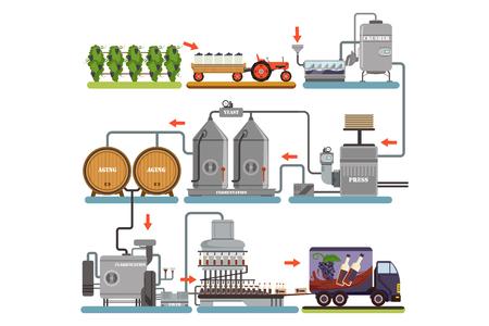 Ilustración de Wine production process, production beverage from grape flat vector Illustrations - Imagen libre de derechos