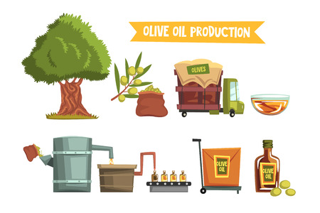 Ilustración de Process of olive oil production by steps from cultivation to finished product growing tree, harvesting, sending to factory, pressing, bottling, packaging, transportation. Flat vector illustration. - Imagen libre de derechos