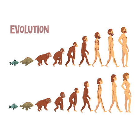 Ilustración de Biology Human Evolution Stages, Evolutionary Process of Man and Woman Vector Illustration - Imagen libre de derechos