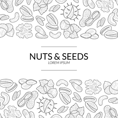 Illustration for Nuts and Seeds Banner Template, Natural Tasty and Healthy Organic Food Hand Vector Illustration - Royalty Free Image