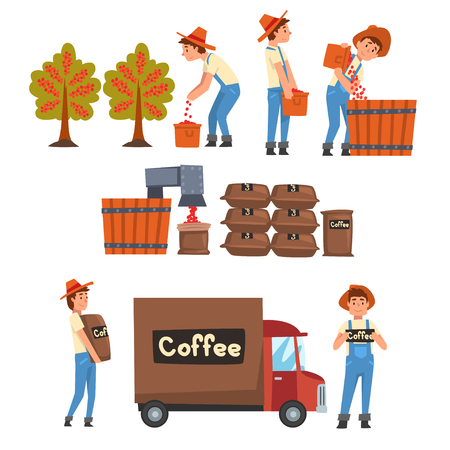 Illustration pour Coffee Industry Production Stages Set, Farmers Gathering, Sorting, Packaging and Transporting Coffee Beans Vector Illustration on White Background. - image libre de droit