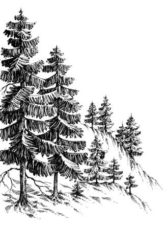 Illustration pour Pine forest, winter mountain landscape drawing - image libre de droit