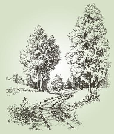 Illustration pour A path in the forest - image libre de droit