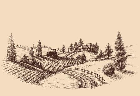 Illustration pour Farm landscape etch, agriculture scene - image libre de droit