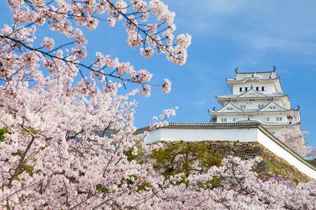 Foto de Japan Himeji castle , White Heron Castle in beautiful sakura cherry blossom season - Imagen libre de derechos