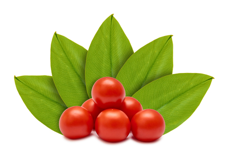 Foto de Fresh organic red tomato on the background of green leaves. Isolated on white. concept of natural origin. - Imagen libre de derechos