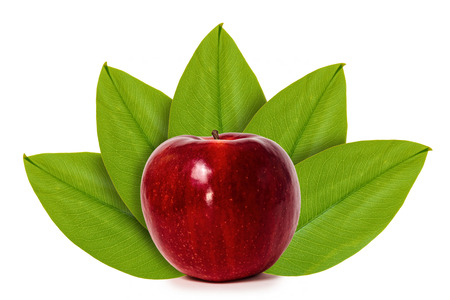 Foto de Fresh red apple on the background of green leaves. Isolated on white. concept of natural origin. - Imagen libre de derechos