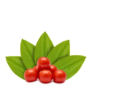 Foto de Fresh organic red tomato on the background of green leaves. Isolated on white. concept of natural origin. Copy space - Imagen libre de derechos