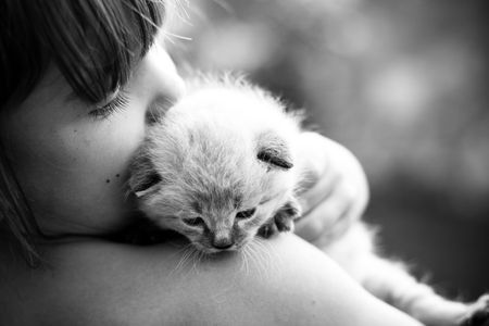 Child and a white kitten. Selective focus.