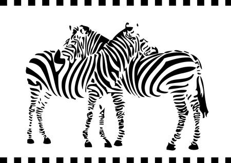 Illustration for two zebras - Royalty Free Image