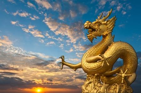 Photo pour Chinese Golden Dragon Statue with sunset - image libre de droit