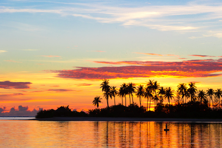 Photo pour Sunset at the seaside with dark silhouettes of palm trees and amazing cloudy sky - image libre de droit
