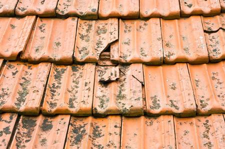 Foto de Broken terracotta tile on a roof - Imagen libre de derechos