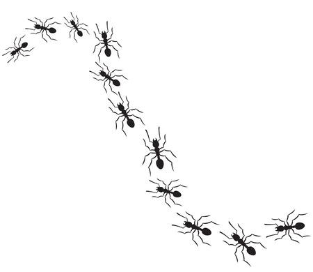 Ilustración de ants traveling in a row (ants marching on path) - Imagen libre de derechos