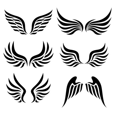 Illustration for wings set  Vector  - Royalty Free Image