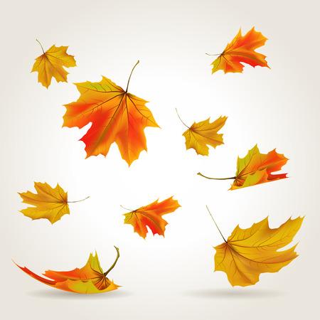 Illustration pour Falling leaves set illustration - image libre de droit