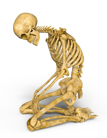 Photo for skeleton - Royalty Free Image
