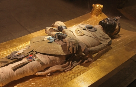 Photo for Ancient Egyptian mummy body preserved by mummification  - Royalty Free Image