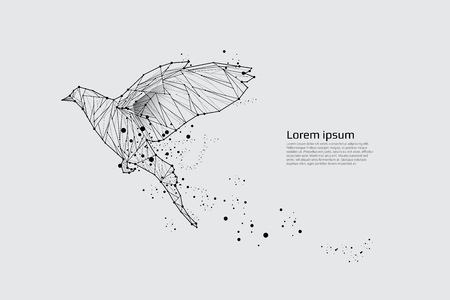 The bird flying with motion and effect. line dot design. vector illustration