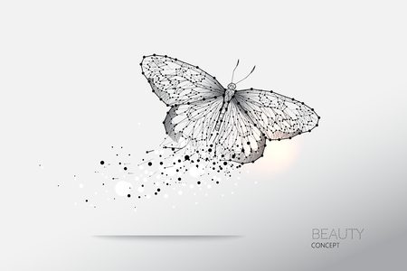 Ilustración de Abstract vector illustration of butterfly moving. starry night sky and line dot graphic design. concept of nature and art. Suitable use for background. - line stroke weight editable - Imagen libre de derechos