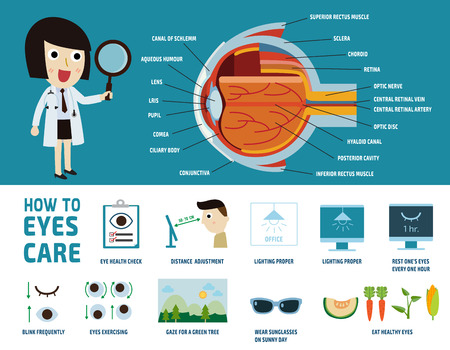 Photo for how to health care eyes. health care concept. infographic element. vector flat icons design. brochure poster banner illustration. isolated on white and blue background. oculist woman character. - Royalty Free Image