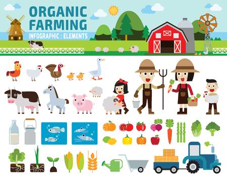 Illustration pour Agriculture and Farming.infographic elements concept.illustration - image libre de droit