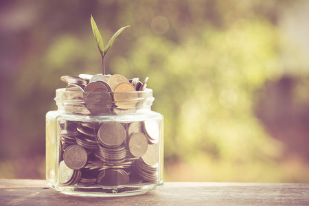 Foto de plant growing out of coins with filter effect retro vintage style - Imagen libre de derechos
