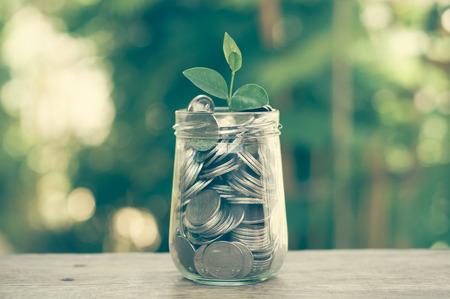 Foto de plant growing out of coins with filter effect retro vintage style - Imagen libre de derechos