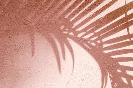 Photo pour abstract background textuer of shadows leaf on a concrete wall - image libre de droit