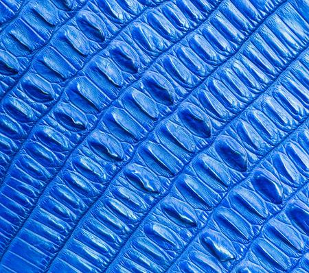 blue crocodile skin texture