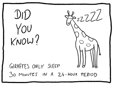 Illustration pour Animal facts about giraffe - fun trivia cartoon doodle concept. Newspaper funny comic fact. - image libre de droit