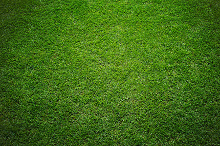 Photo pour grass of stadium background - image libre de droit