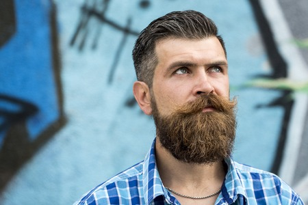 Foto de Gloomy serious unshaven guy with long beard and hendlebar moustache in checkered white and light blue shirt looking away standing outdoor on graffiti background copyspace, horizontal picture - Imagen libre de derechos