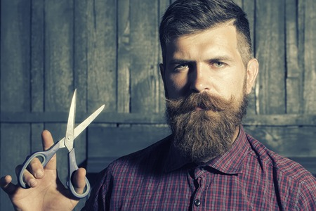 Photo for Portrait of unshaven man in violet checkered shirt with long beard and handlebar moustache holding sharp scissors looking forward standing on wooden wall background, horizontal picture - Royalty Free Image