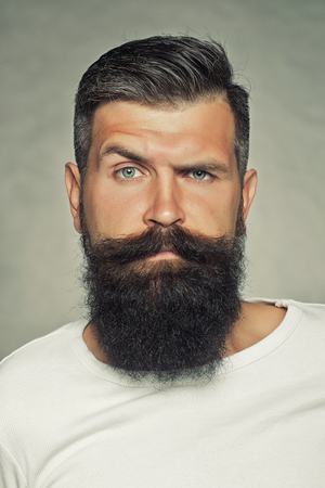 Photo for Portrait closeup of one handsome sensual grey-haired unshaven man with long beard moustache and eyebrow raised model looking forward in studio on light background, vertical picture - Royalty Free Image