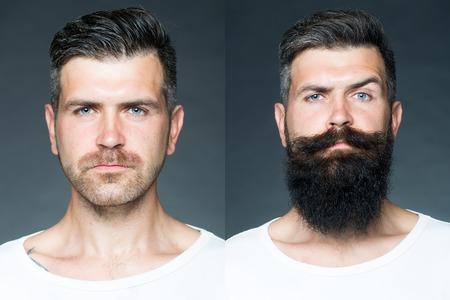 Photo for Collage portrait of one handsome man on left  bristle haired on right unshaved with long beard and moustache looking forward on grey background, horizontal picture - Royalty Free Image