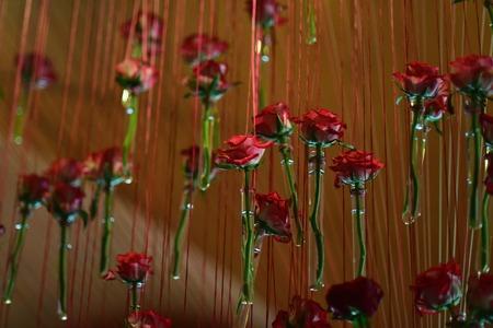 Foto de Glass test tubes with red rose flowers hang on brown background, concept of similarity - Imagen libre de derechos