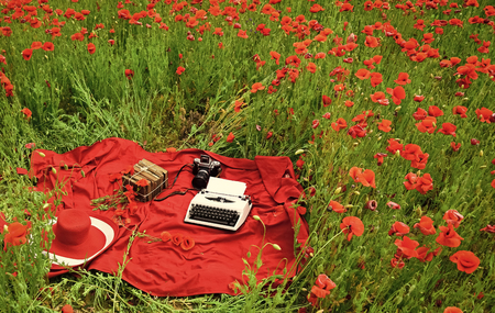 Photo pour a typewriter on the beautiful poppy flower field - image libre de droit
