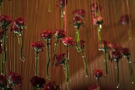 Foto de decor with roses. Glass test tubes with red rose flowers hang - Imagen libre de derechos