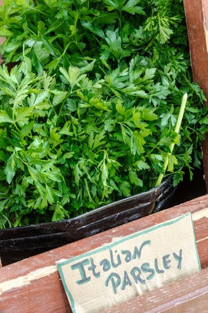 Bunches of Italian parsley on display for sale at local farmers market