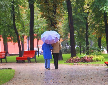 couple under umbrela walk in autumn park